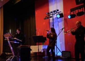 Ted-Musik-Band  –  oder  – Alleiunterhalter